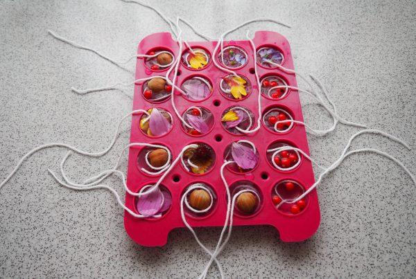 Silikonform mit eingefrorenen Nüssen, Blütenblättern oder Beeren