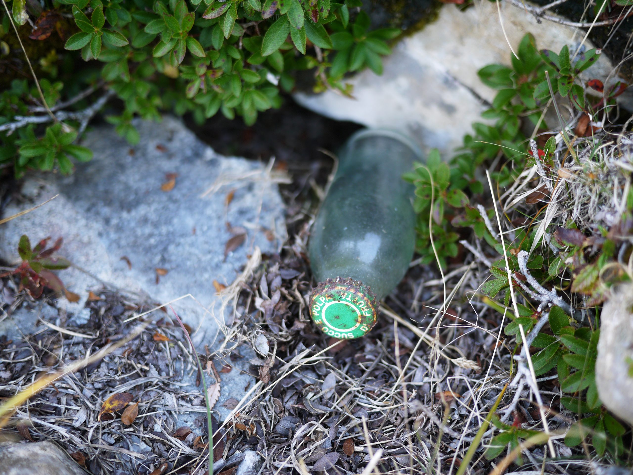 Müll am Berg