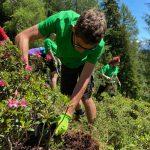 Naturschutz Wegearbeit